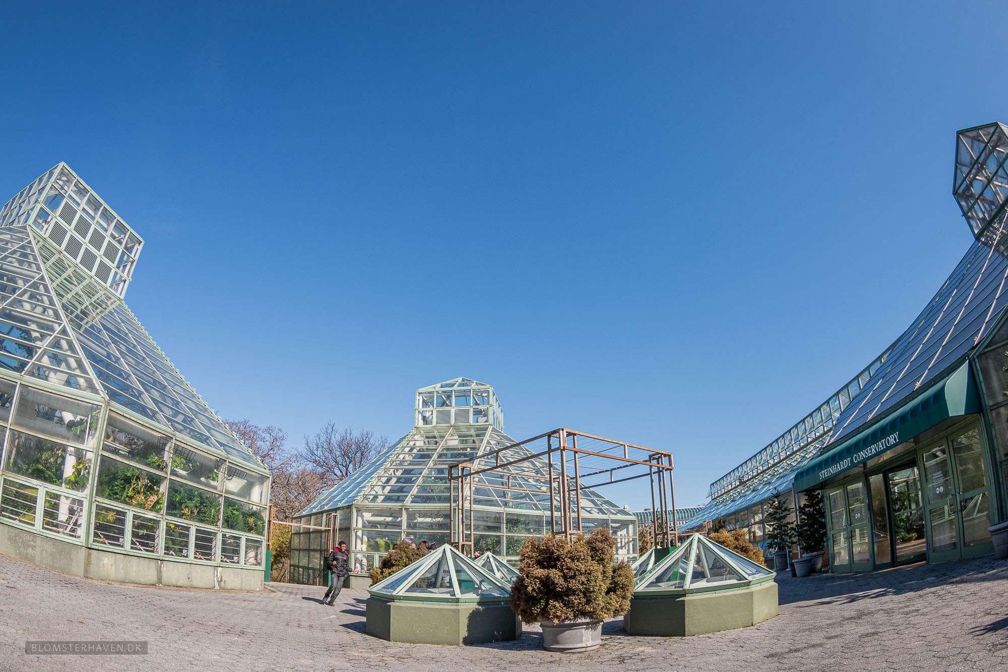 Steinhardt Conservatory i Brooklyn Botanic Garden