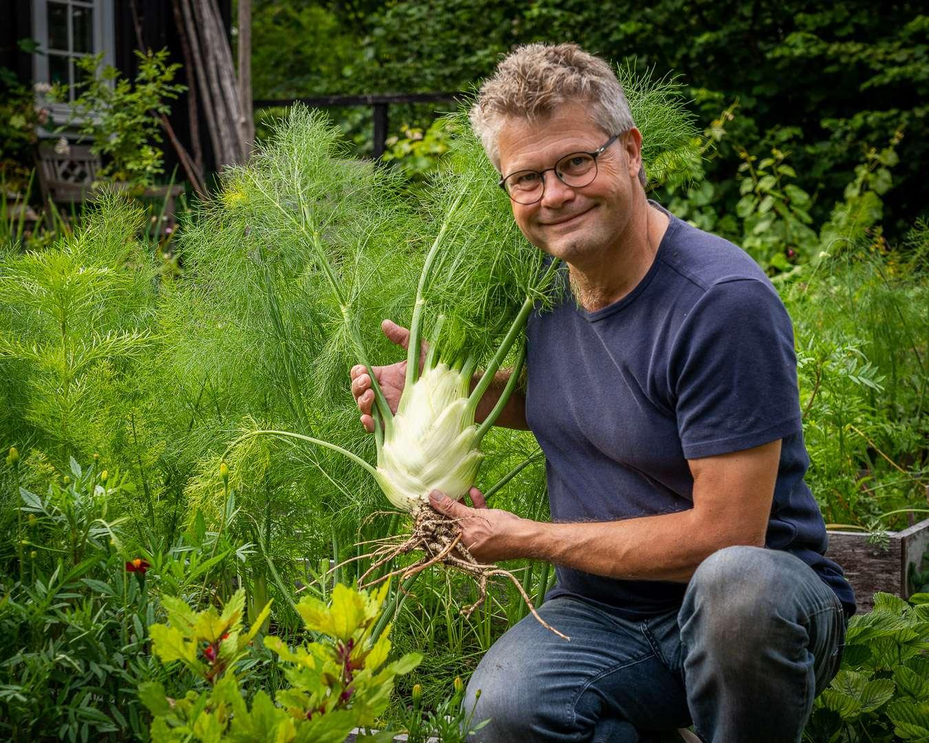 Dyrkning af store afgrøder som en knoldfennikel.