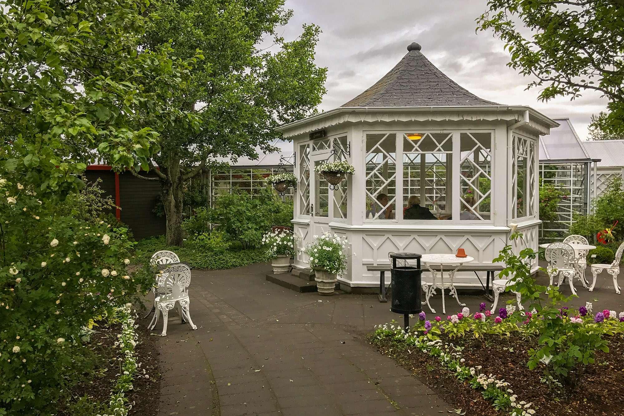 tehuset i reykjavik botaniske have